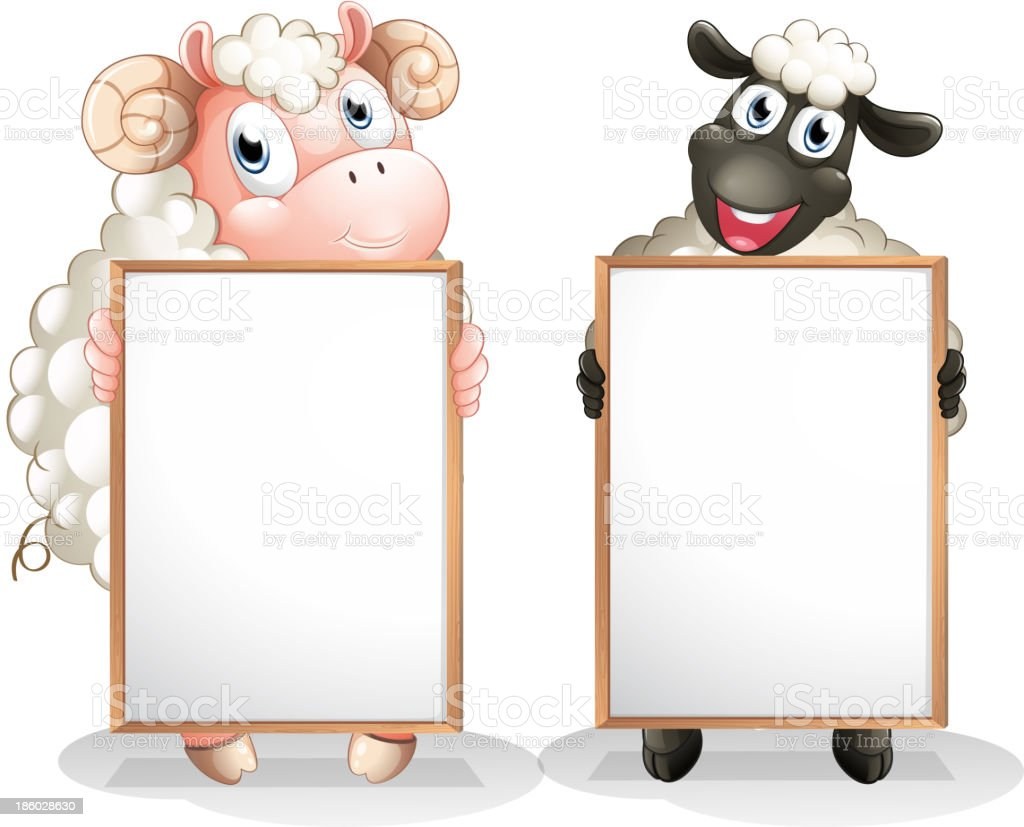 Two sheeps with empty boards vector art illustration