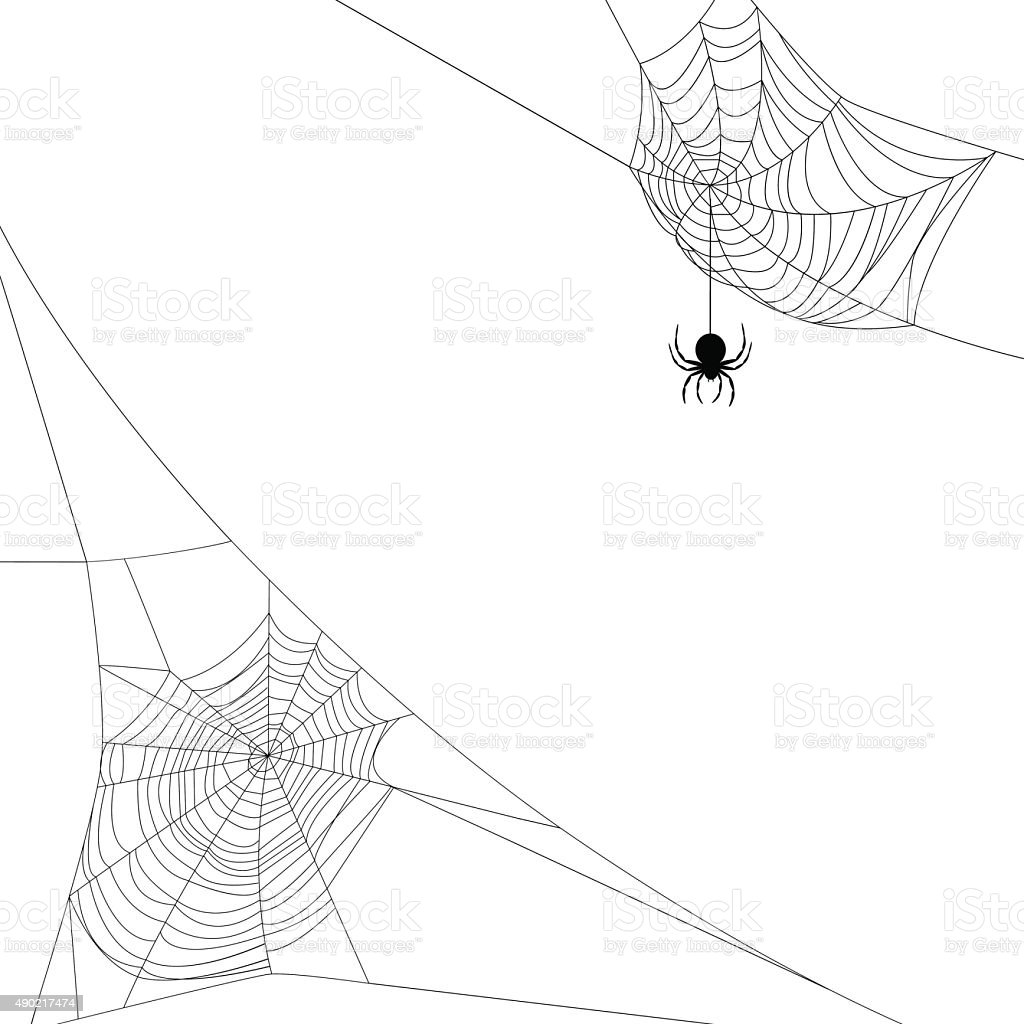 two spider webs vector art illustration
