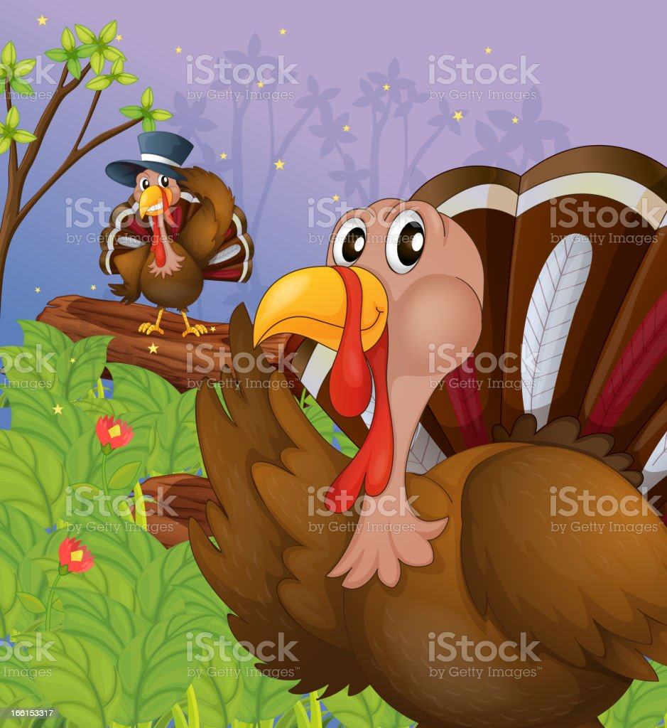 Two turkeys in the forest royalty-free stock vector art