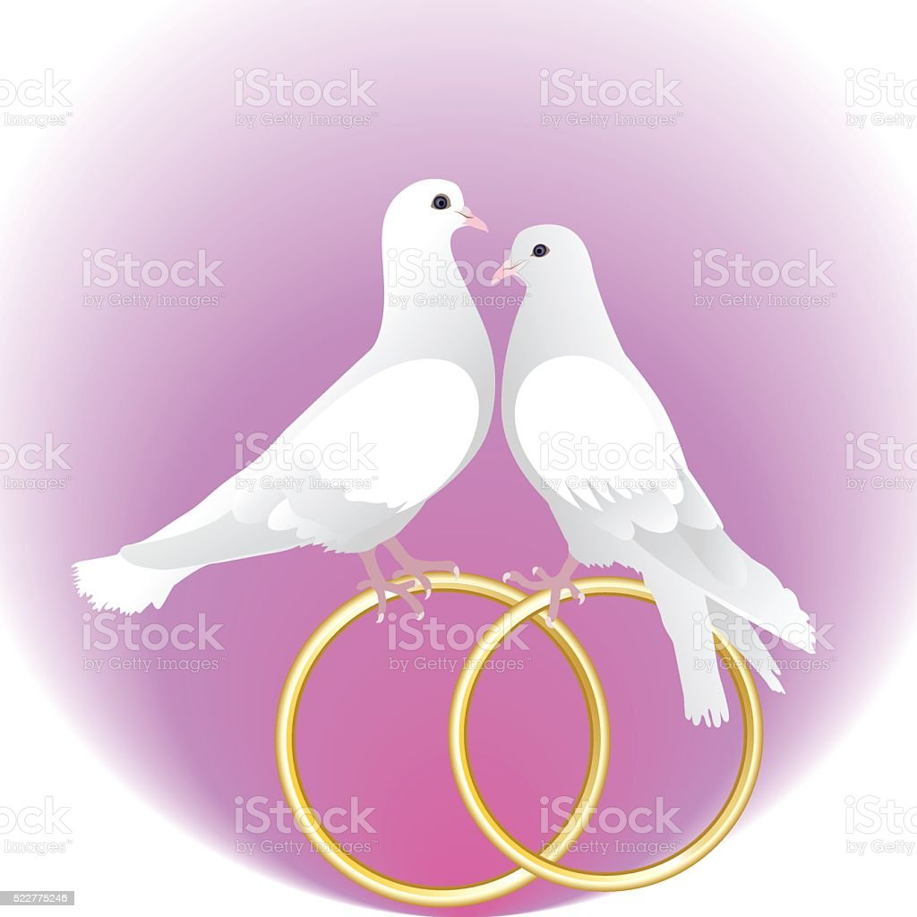Two white pigeons and gold wedding rings vector art illustration