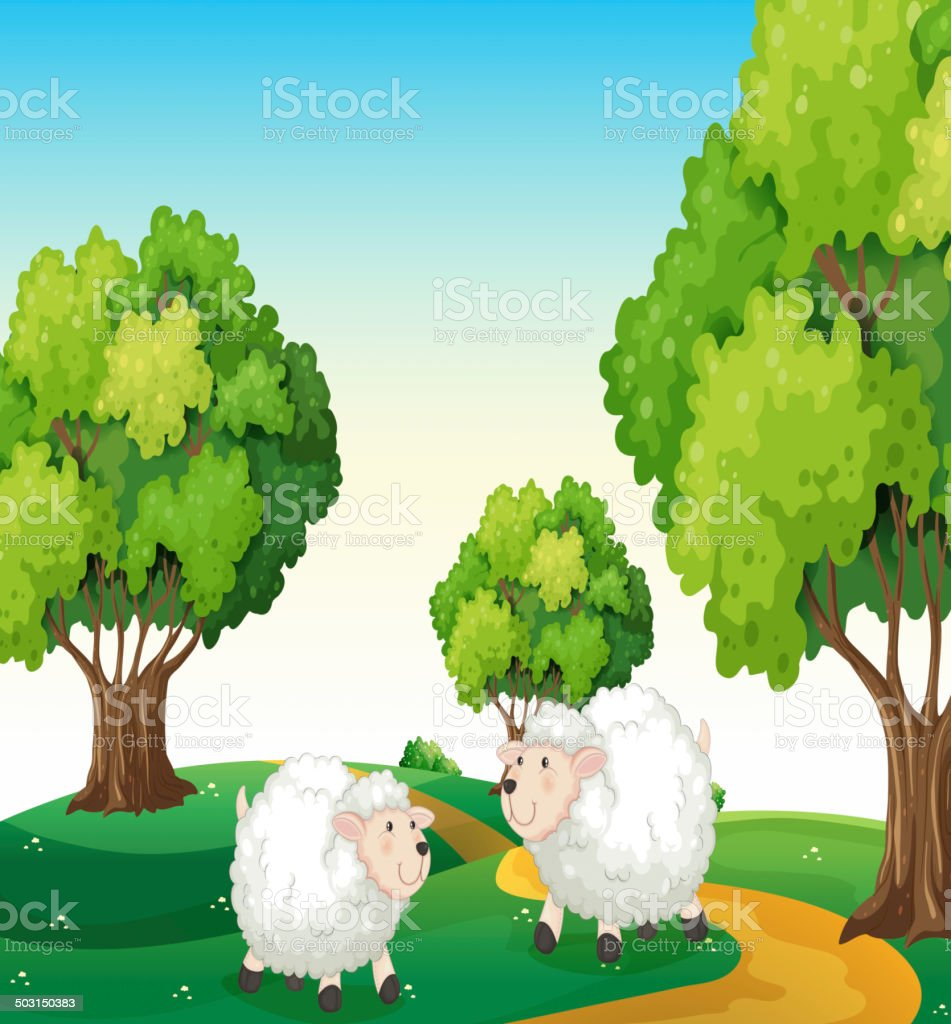 Two white sheeps at the hilltop vector art illustration