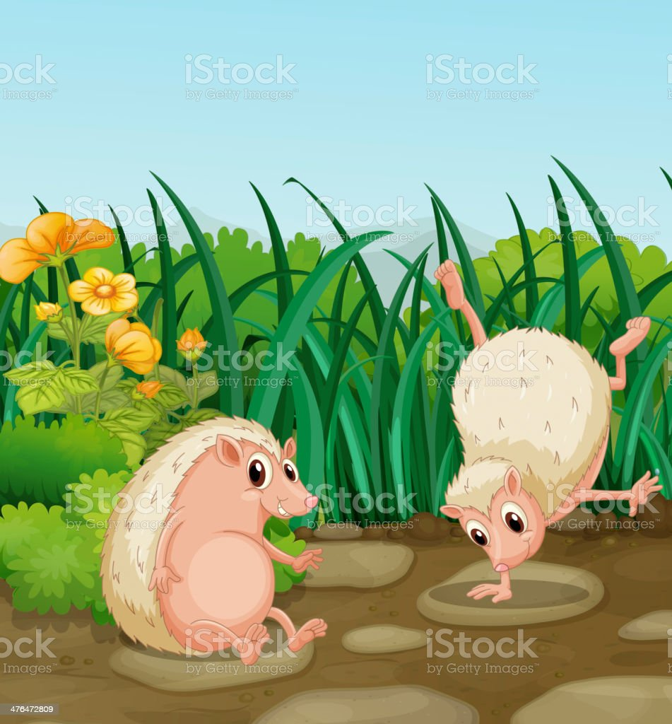 Two wild animals near the weeds vector art illustration