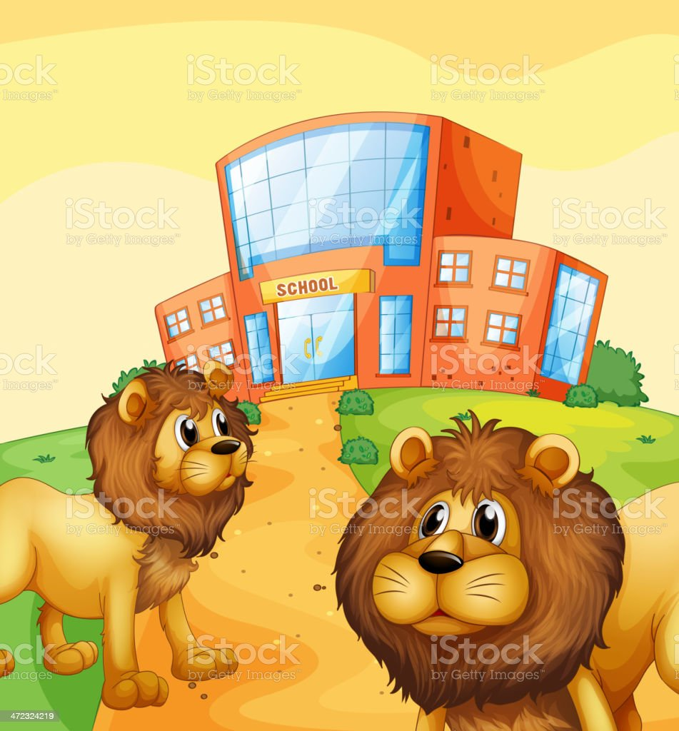 Two wild lions in front of a school building royalty-free stock vector art