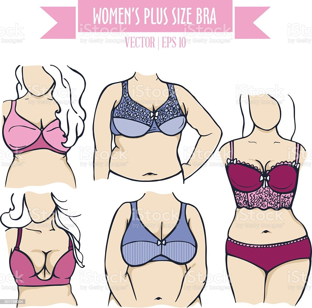 Types of colorful bra for women plus size vector art illustration