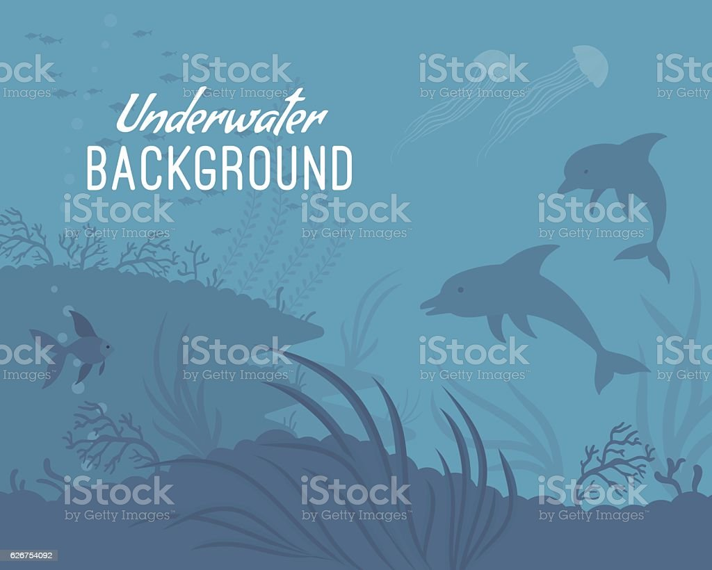 Underwater background template with dolphin vector art illustration