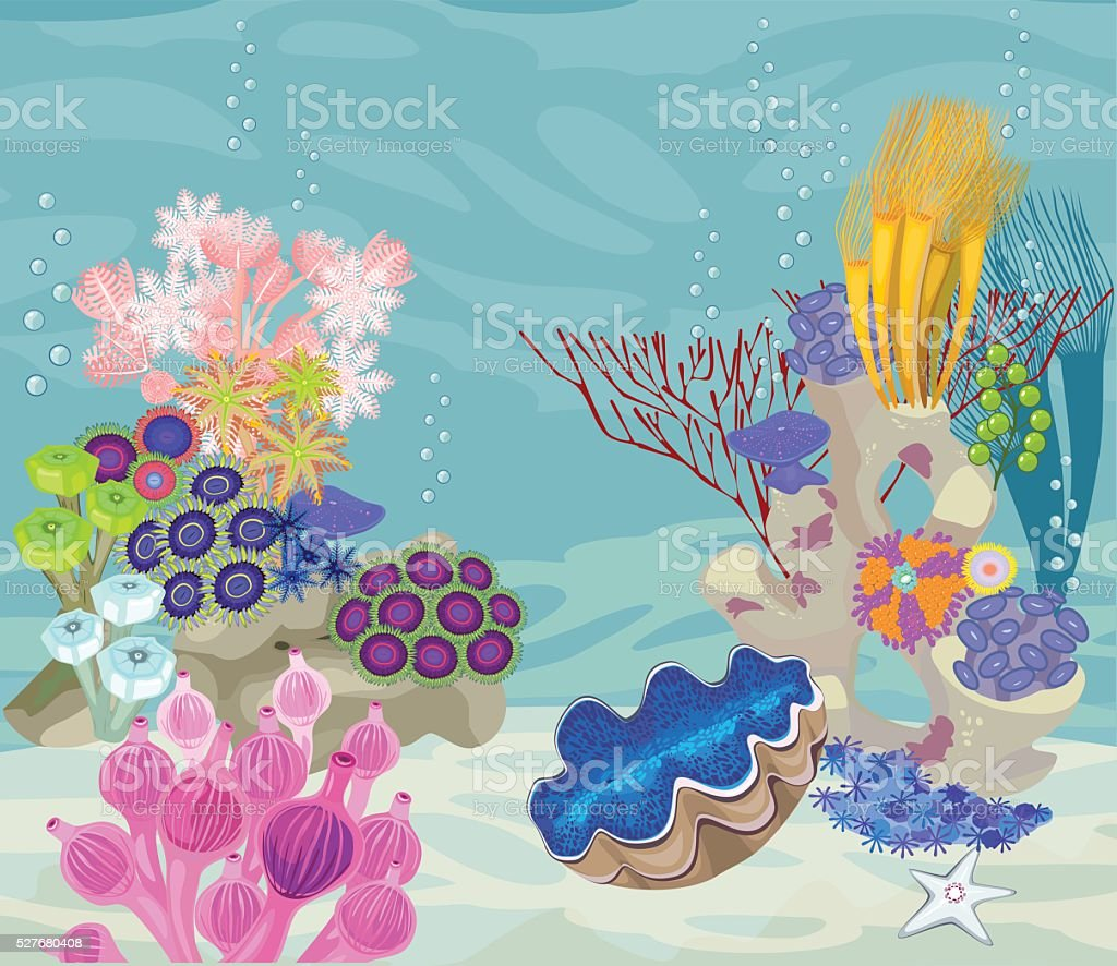 underwater landscape with different corals and tridacna vector art illustration