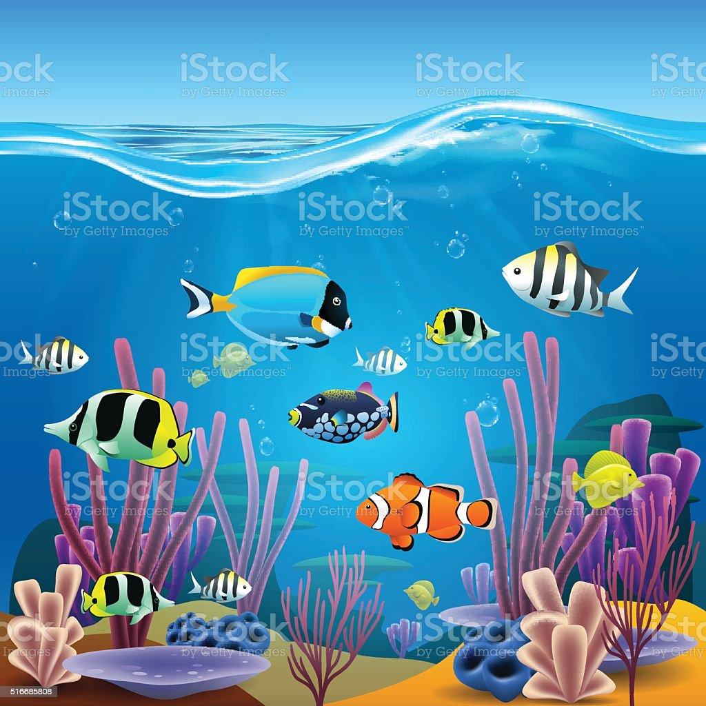 Underwater life vector art illustration