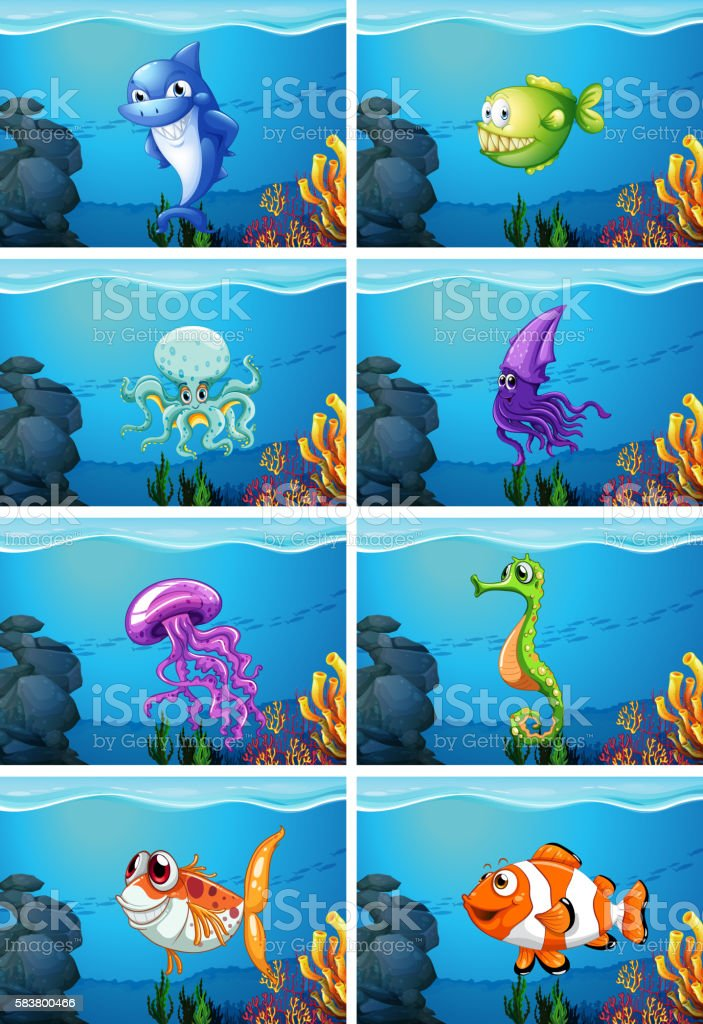 Underwater scenes with sea animals illustration