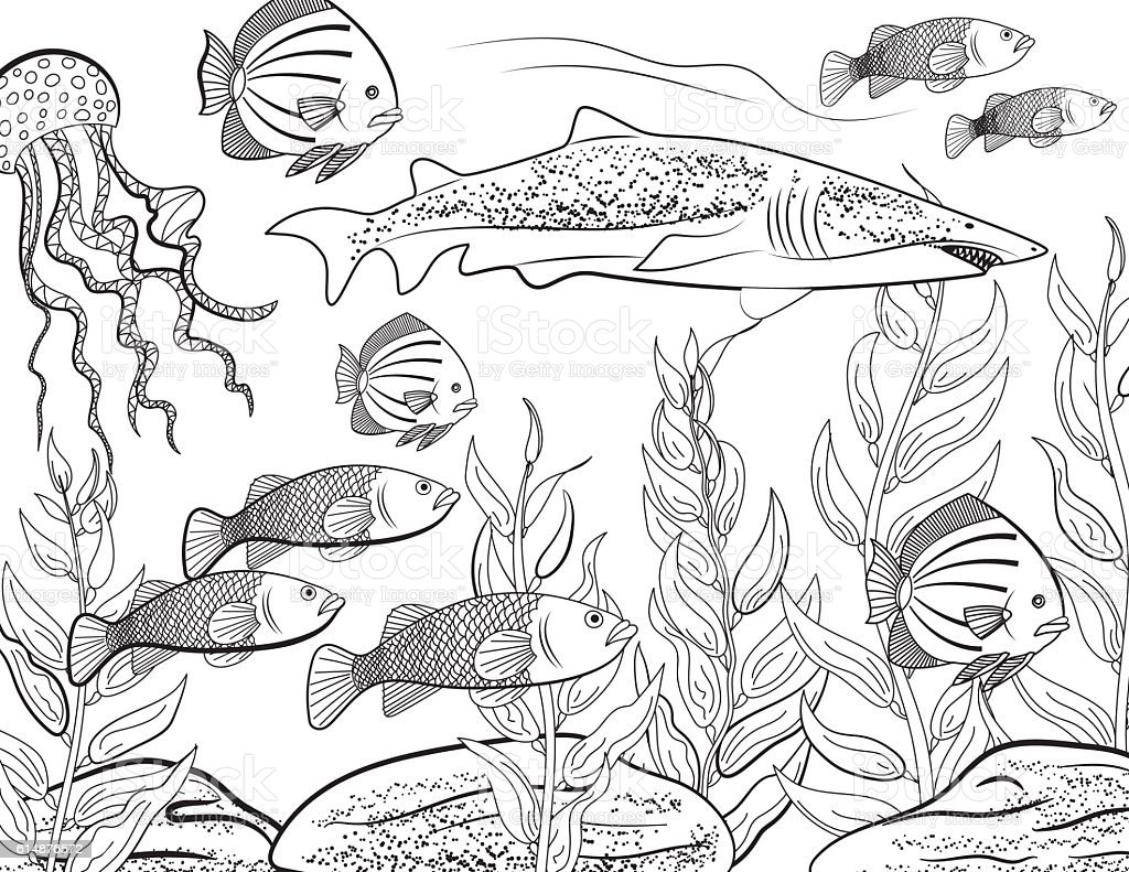 Underwater School Of Fish Adult Coloring Book Page vector art illustration