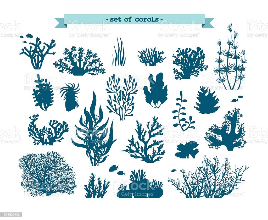 Underwater set of corals and algaes. vector art illustration