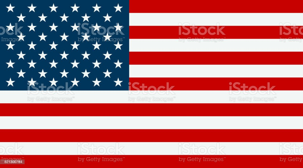 United States flag vector art illustration