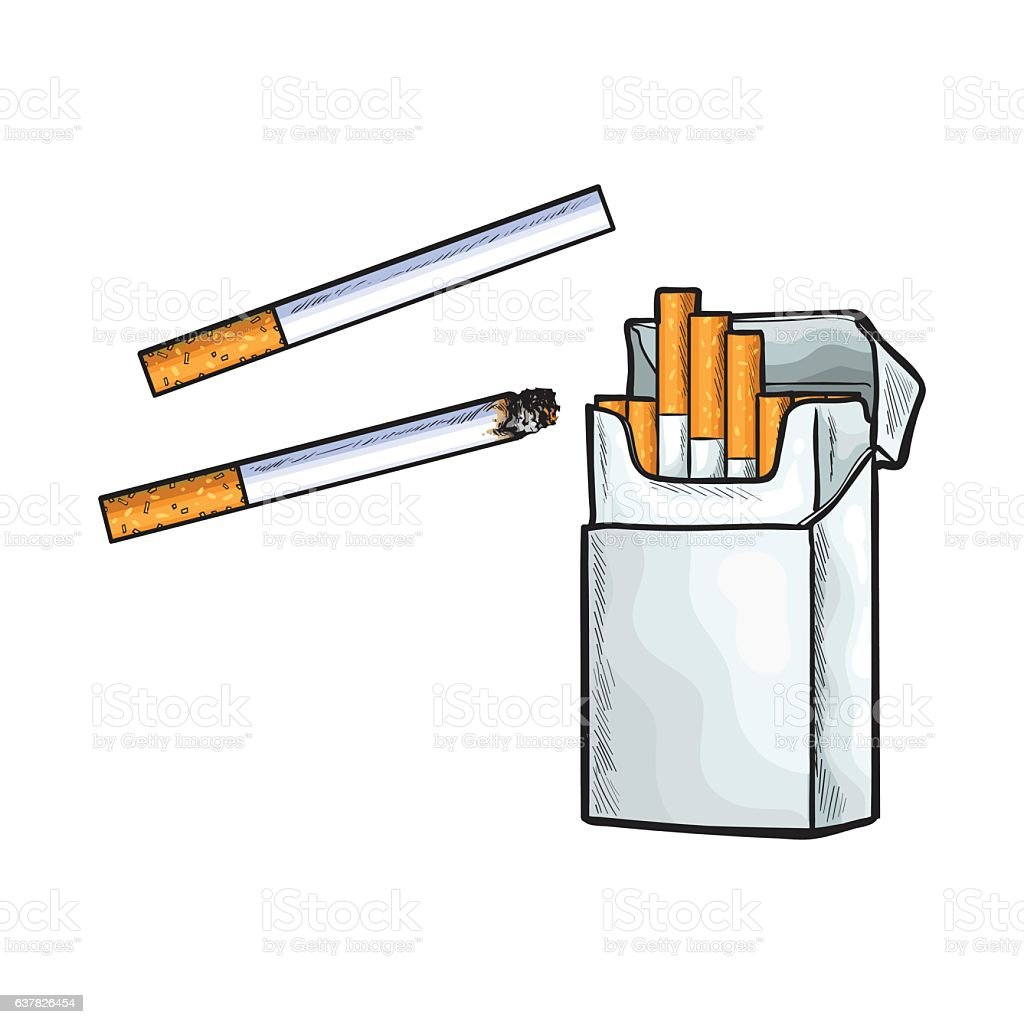 Unlabeled standing open pack of cigarettes, isolated sketch vector illustration vector art illustration