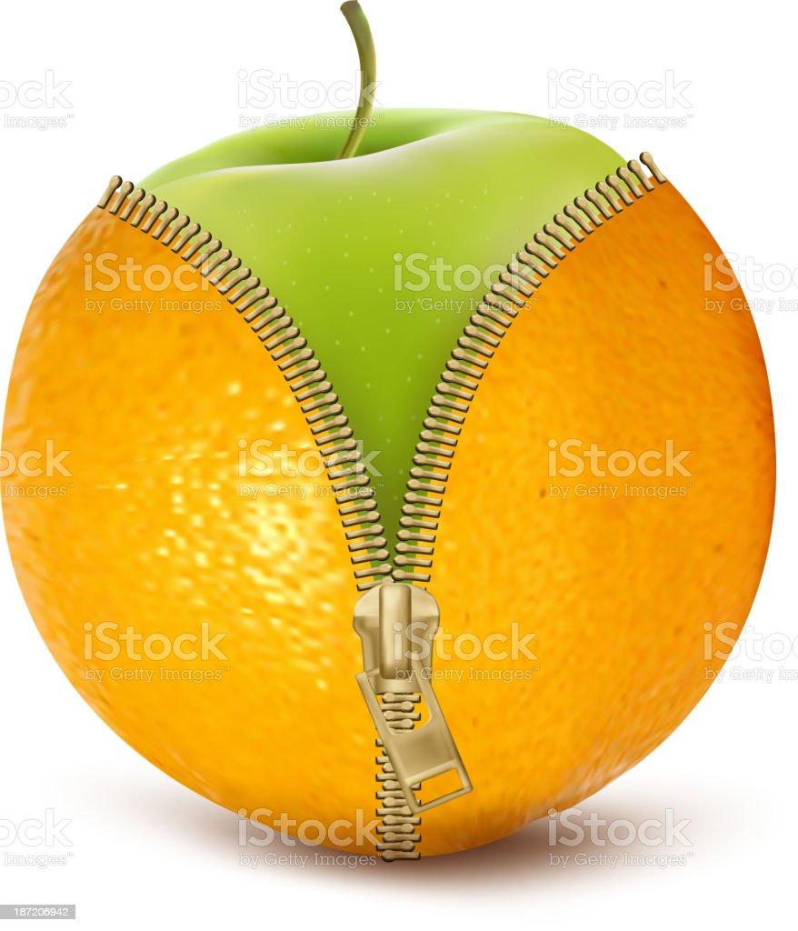 Unzipped orange with green apple. vector art illustration