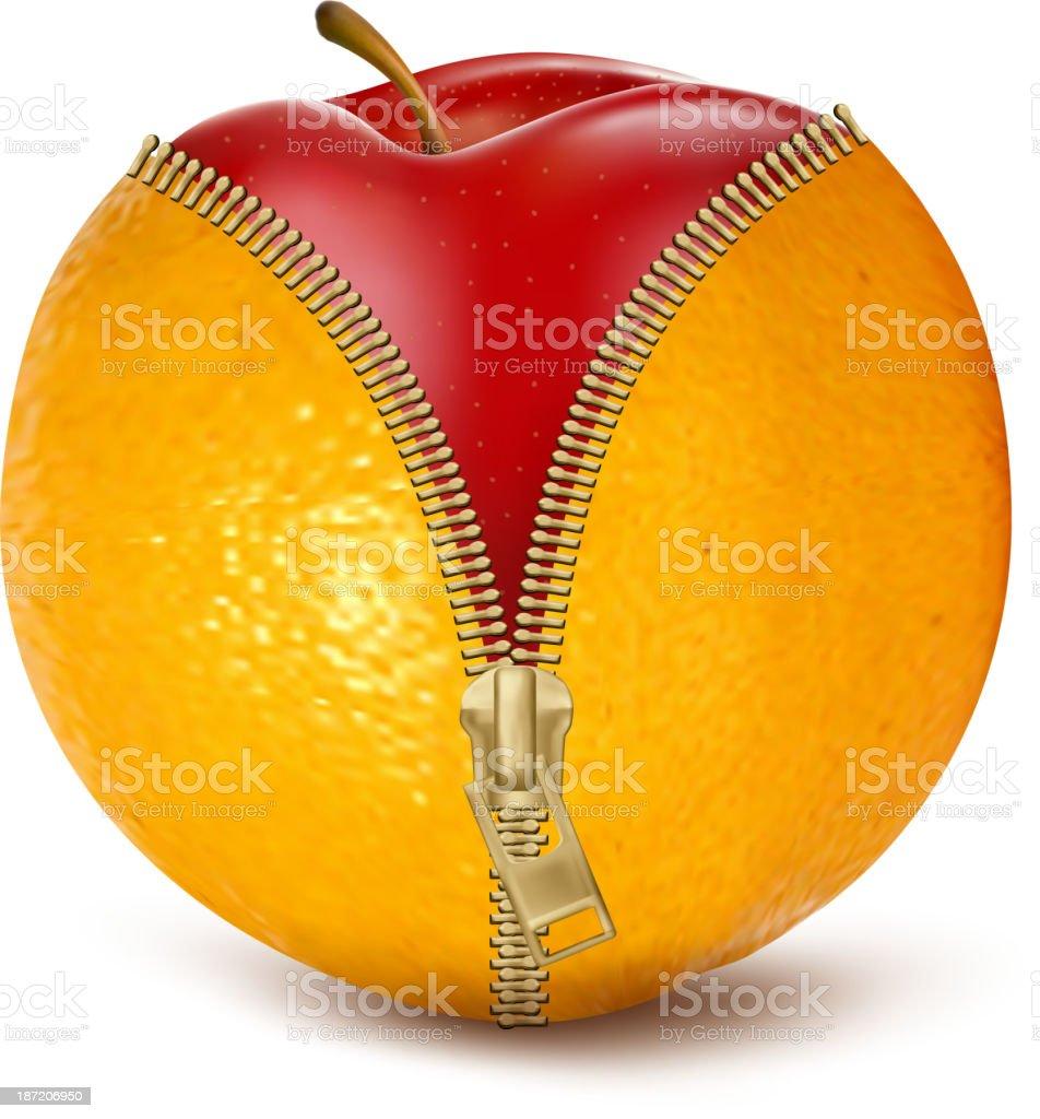 Unzipped orange with red apple. vector art illustration