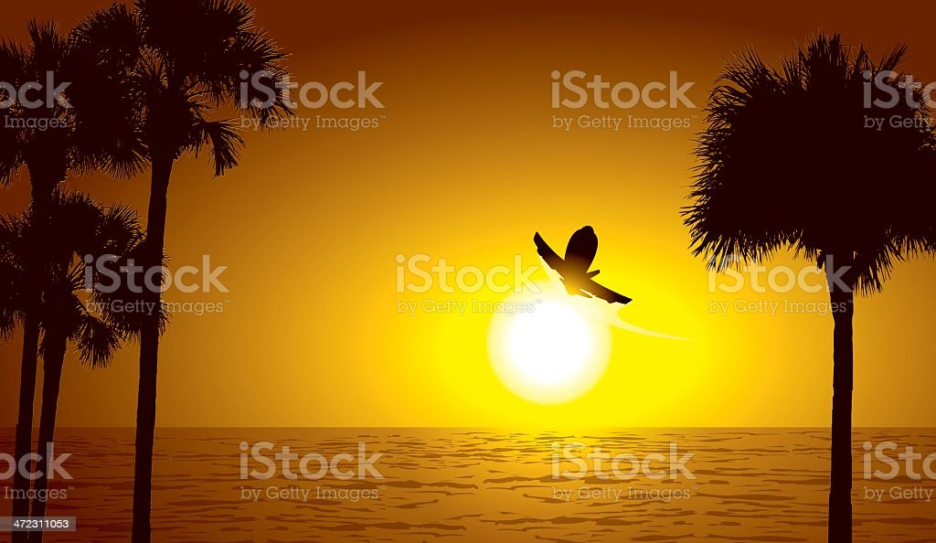 Vacation - Airplane in Tropical Setting royalty-free stock vector art