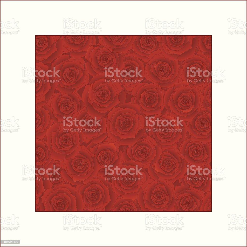 Valentine Roses ( vector ) vector art illustration