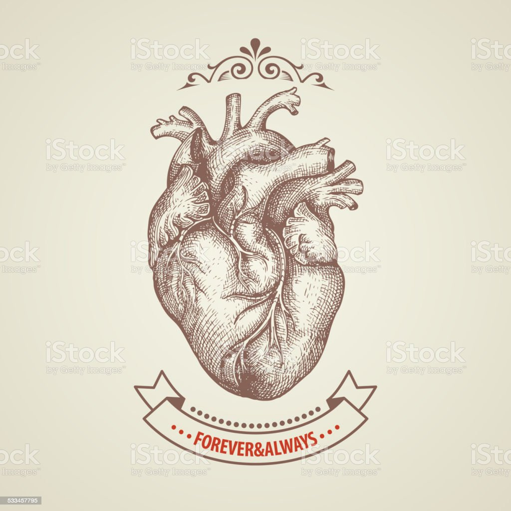 Valentine's Day card. Retro engraving heart vector art illustration