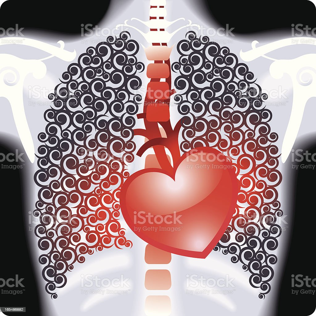 Valentine's Day X-Ray Shows Shiny Red Heart Vector royalty-free stock vector art