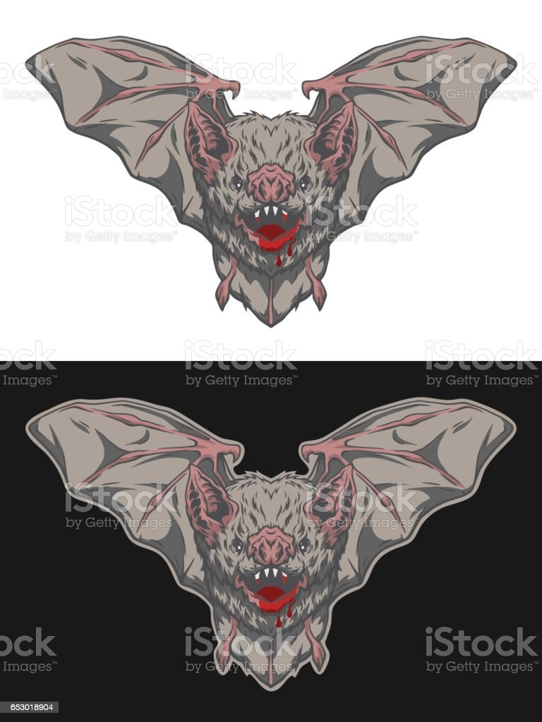 Vampire bat in flight Two options. vector art illustration