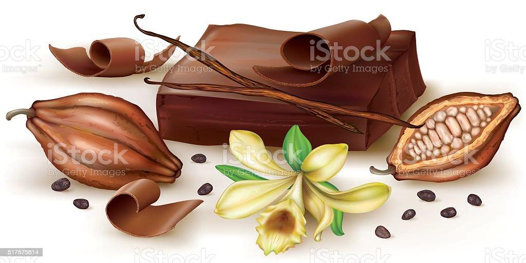 Vanilla chocolate and cocoa fruit vector art illustration