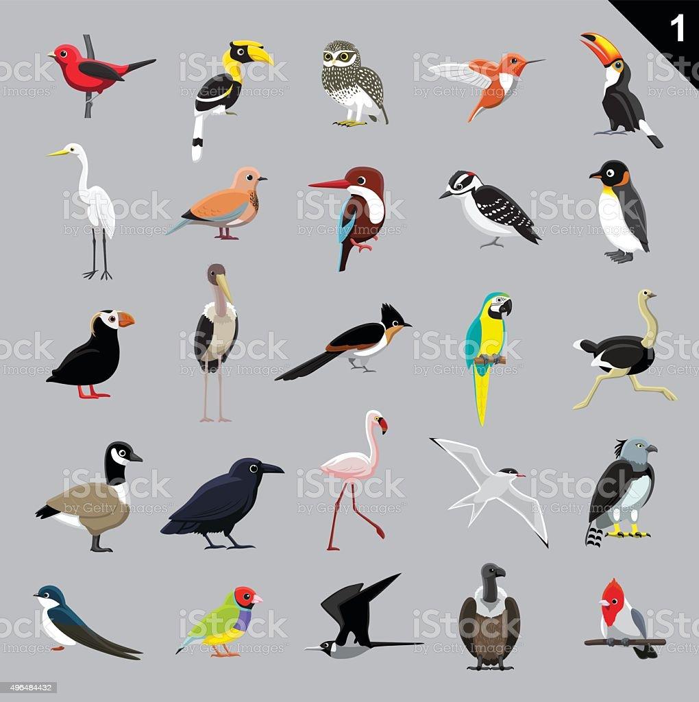 Various Birds Cartoon Vector Illustration 1 vector art illustration