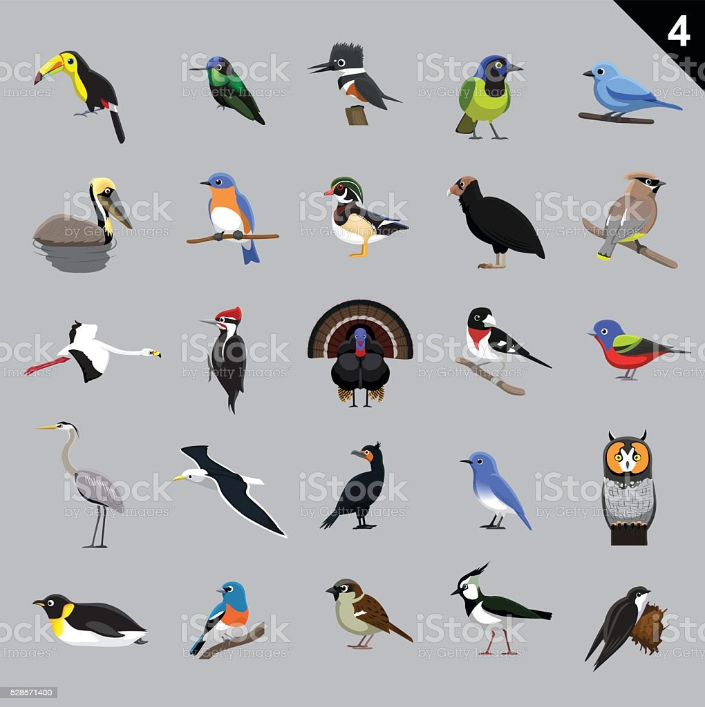 Various Birds Cartoon Vector Illustration 4 vector art illustration