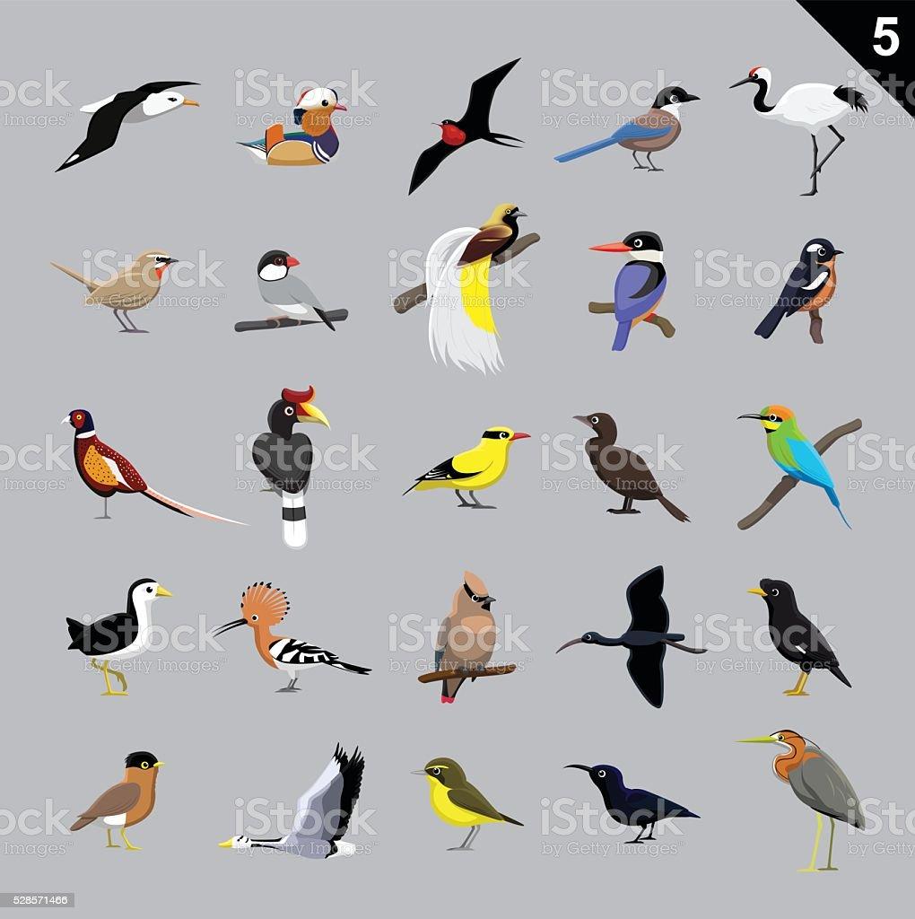 Various Birds Cartoon Vector Illustration 5 vector art illustration