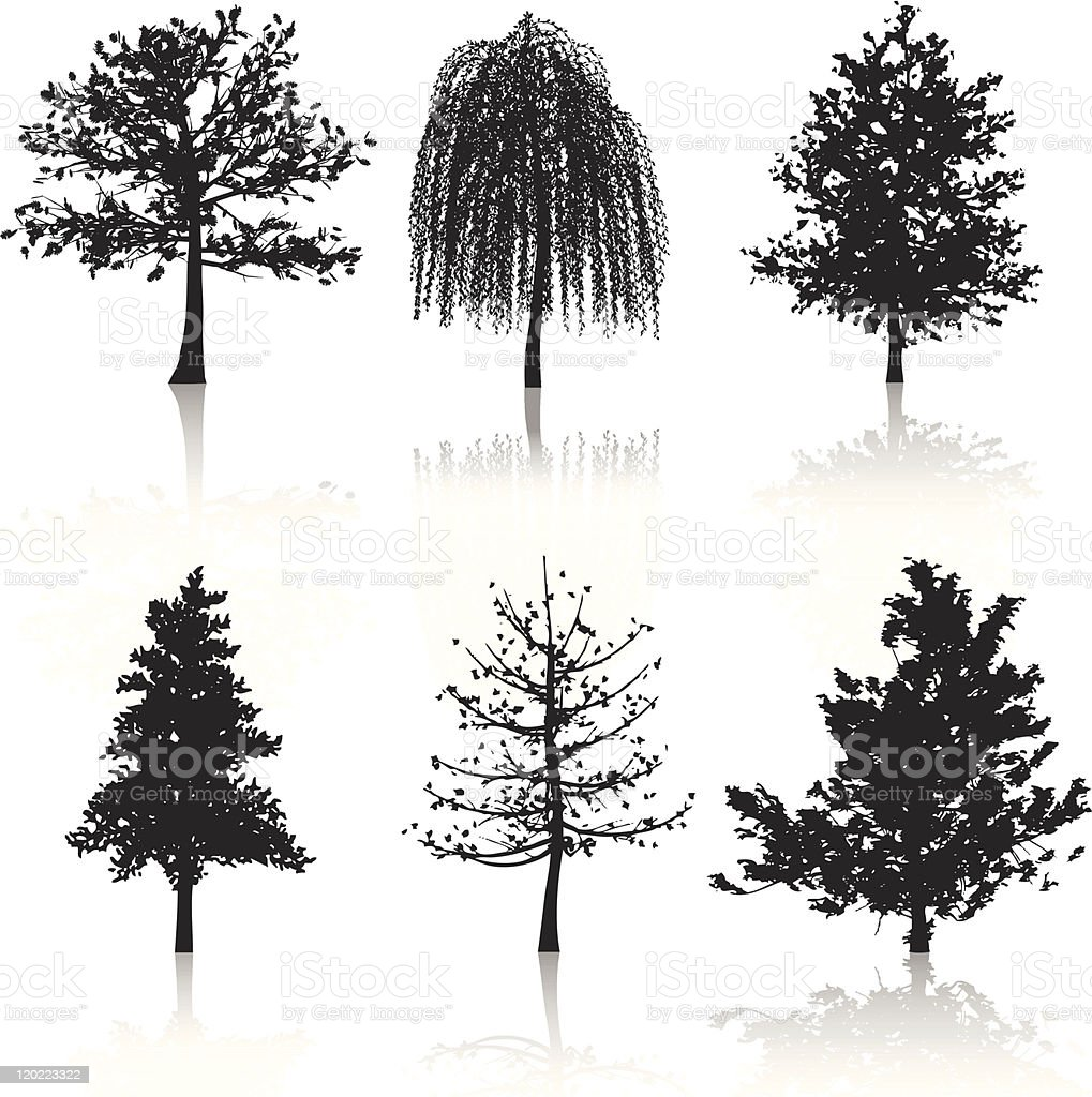 Various black tree silhouettes with reflections vector art illustration