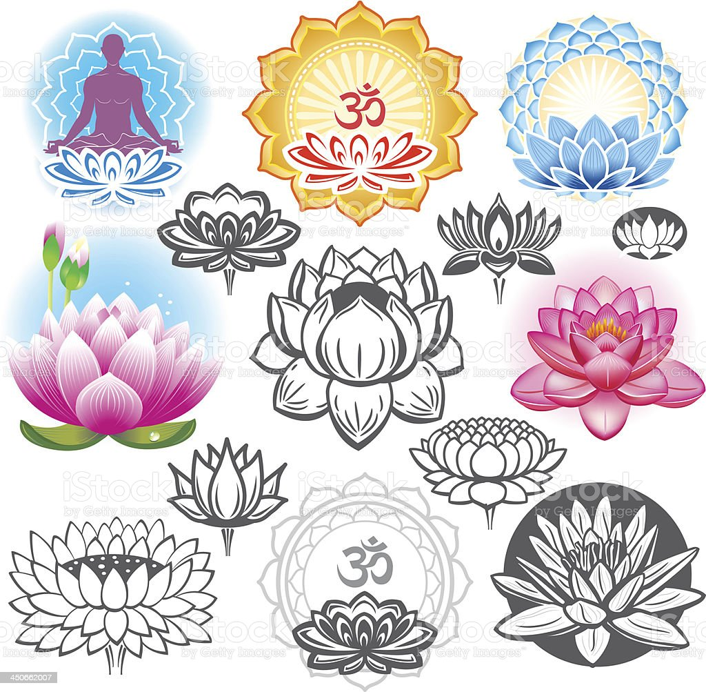 Various illustrations of a lotus flower royalty-free stock vector art
