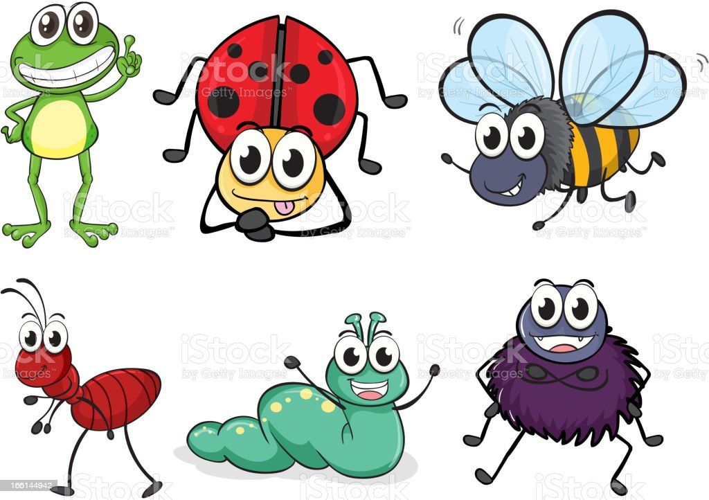 Various insects and animals on a white background