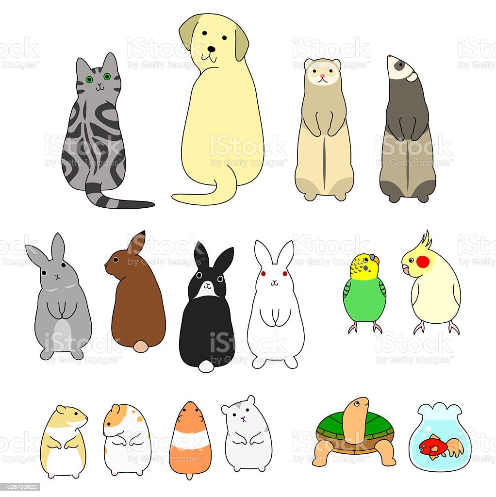 various posing pets set vector art illustration