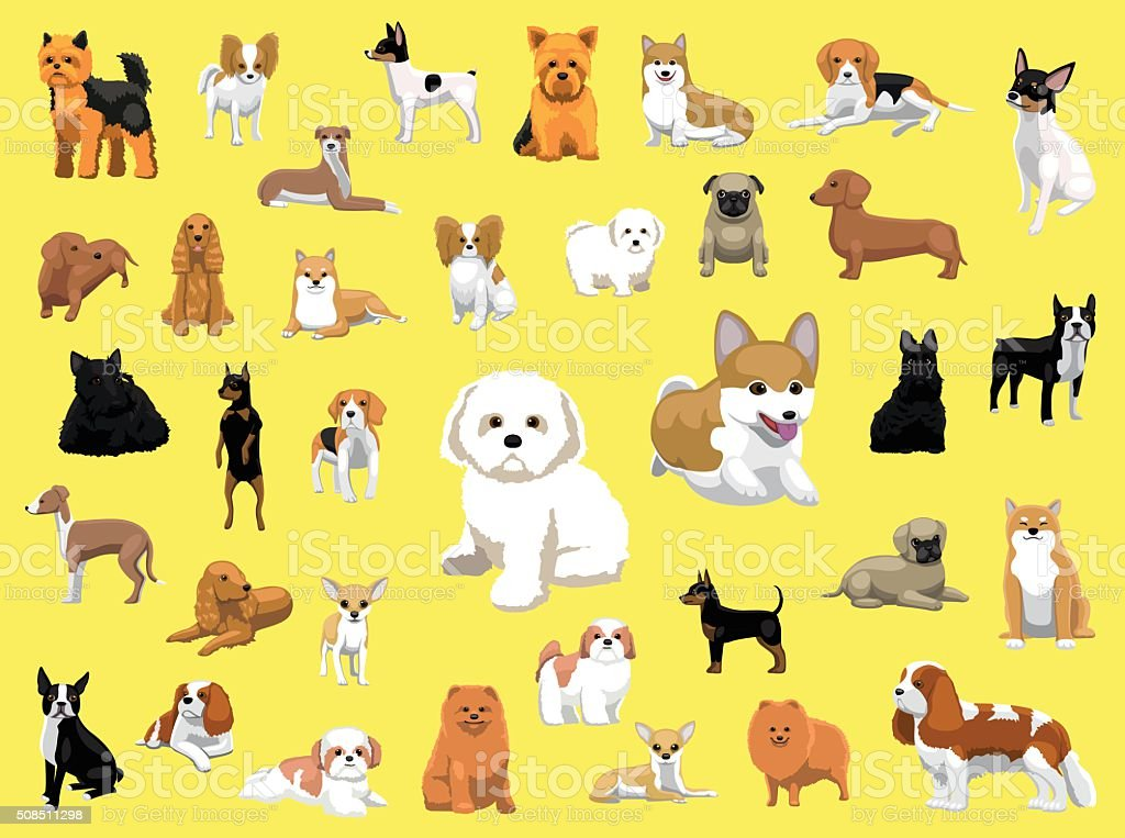 Various Small Dog Breeds Poses vector art illustration