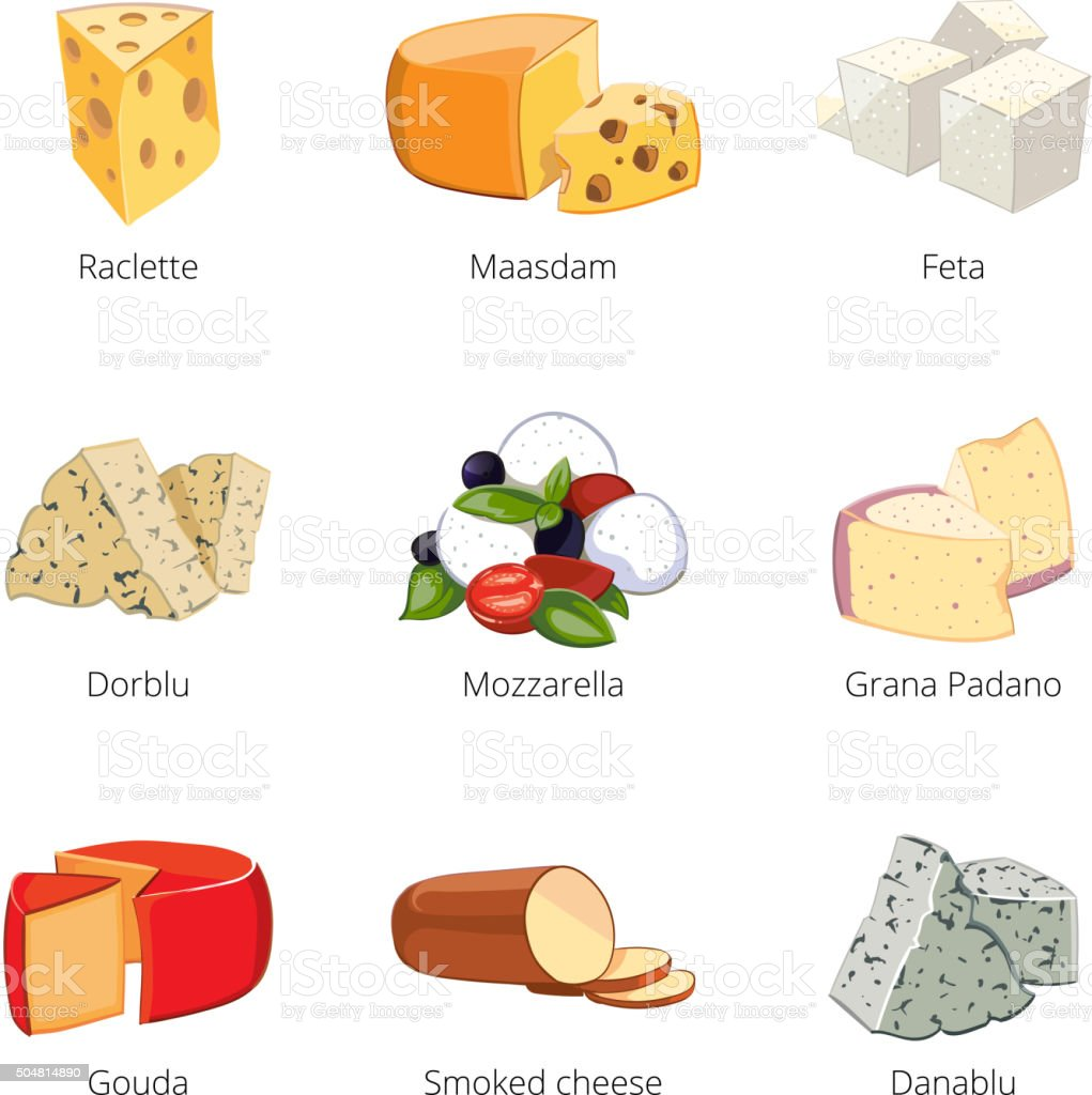 Various types of cheese in cartoon vector style vector art illustration