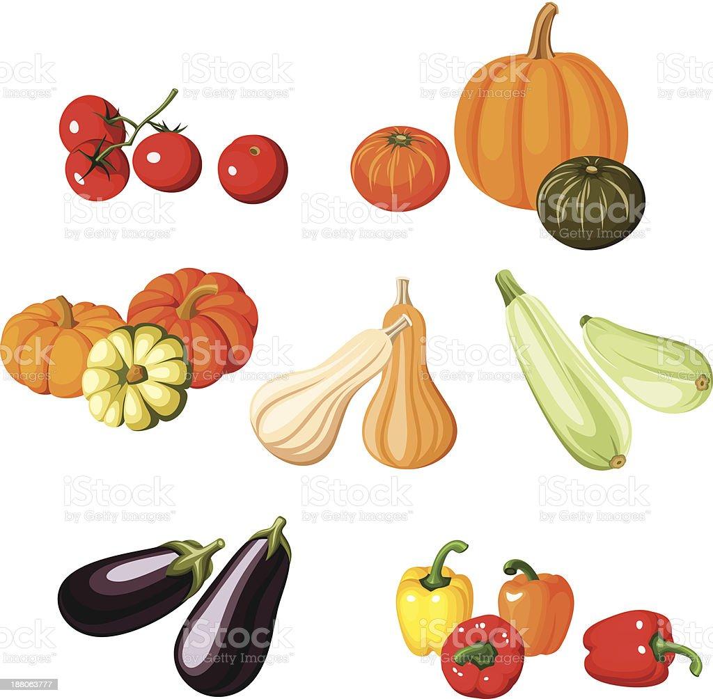 Various vegetables. Vector illustration. vector art illustration