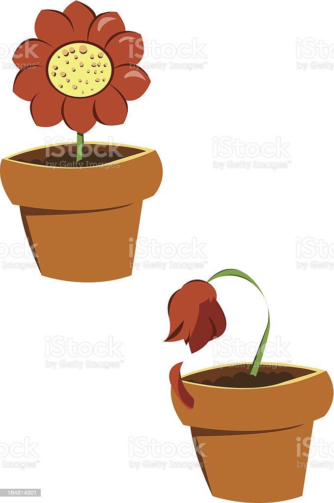 vases of flowers royalty-free stock vector art