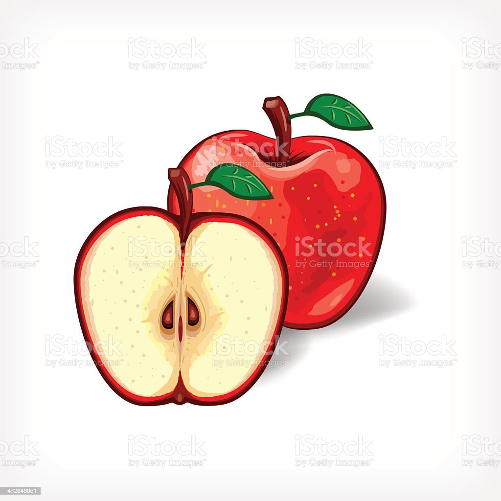 Vector Apple royalty-free stock vector art