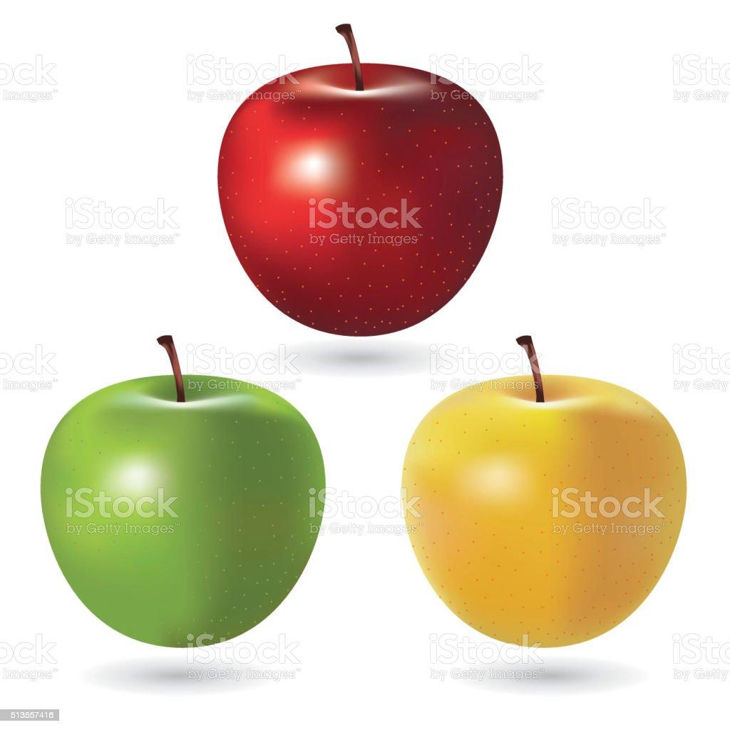Vector Apples vector art illustration