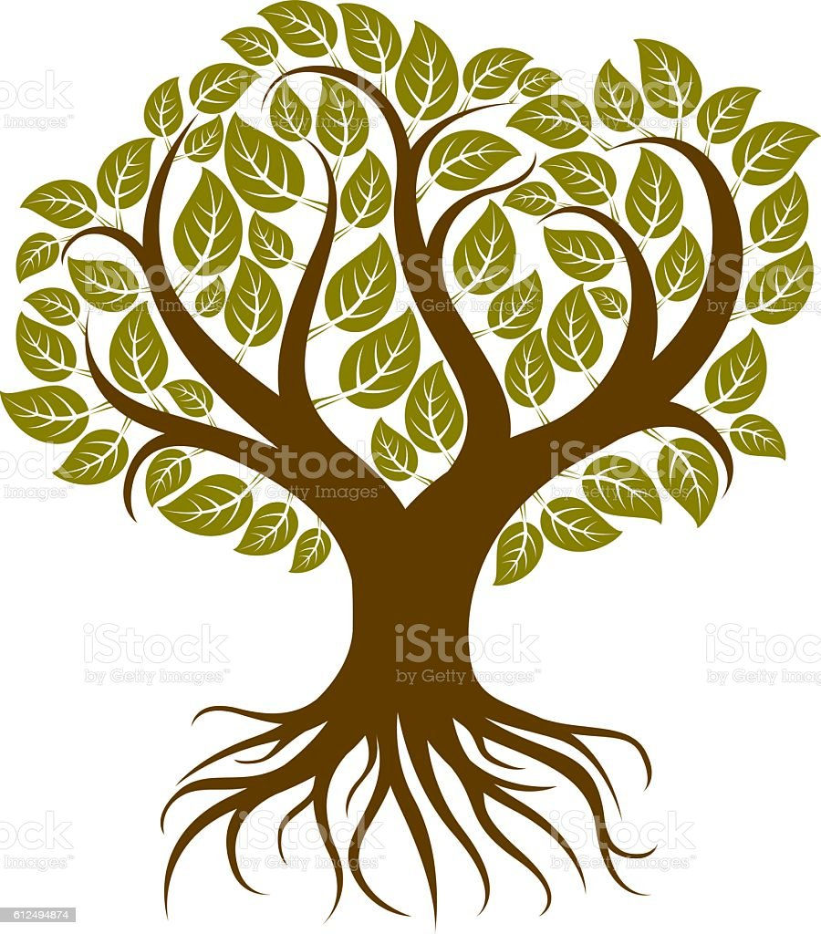 Vector art illustration of branchy tree with strong roots. Tree vector art illustration