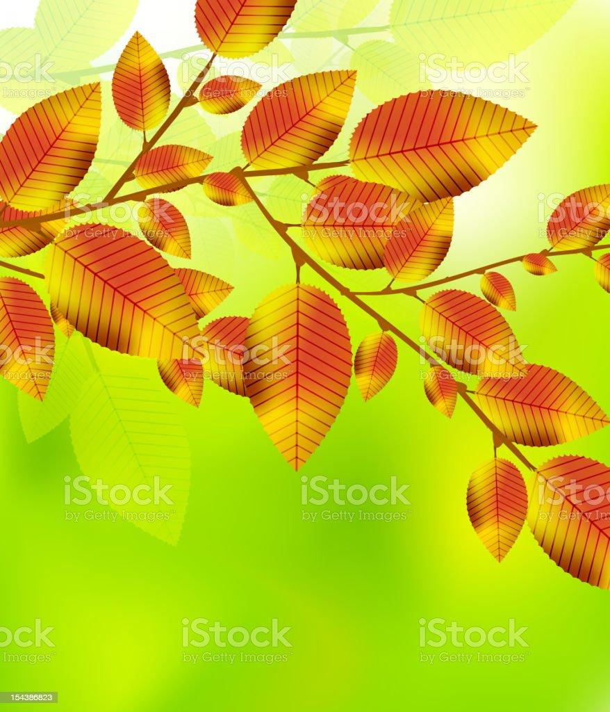 Vector autumn background royalty-free stock vector art