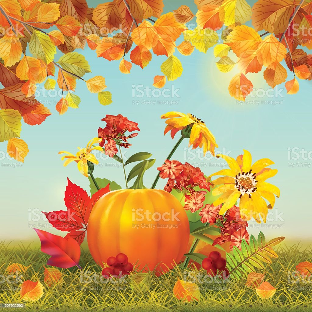 Vector Autumn Thanksgiving Card vector art illustration