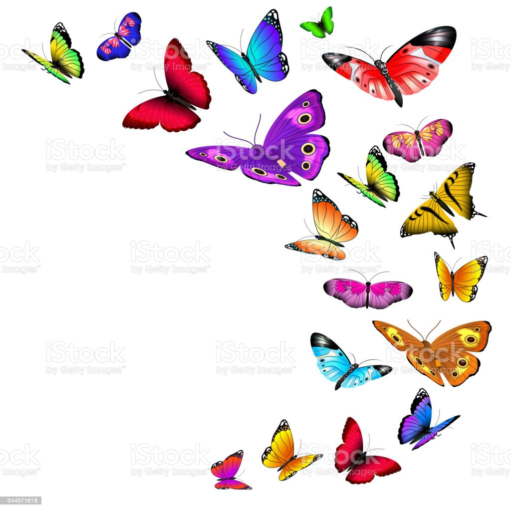 Vector background with flying butterflies vector art illustration