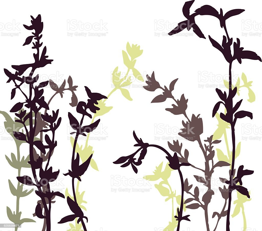 Vector background with herbal silhouettes vector art illustration