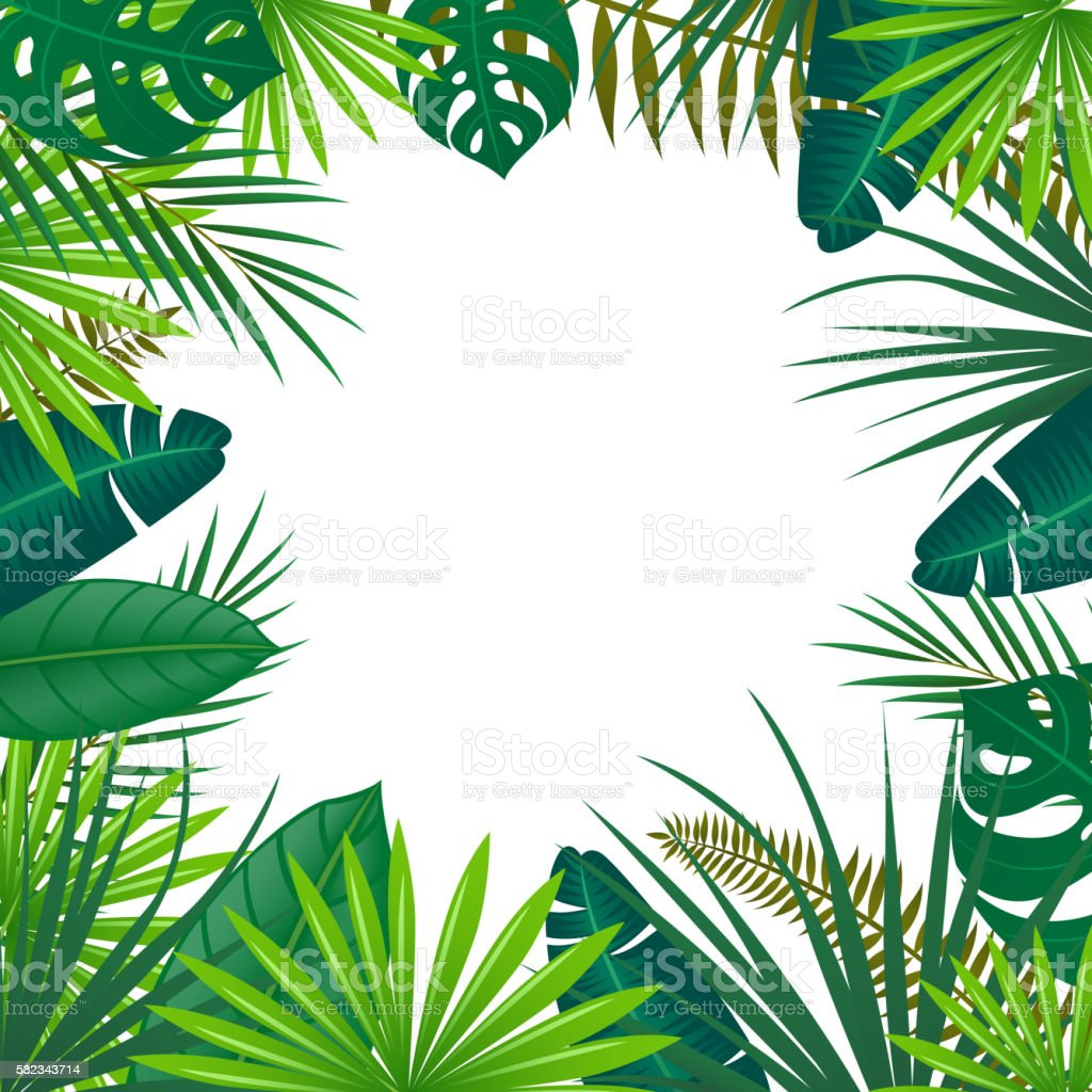 Vector Background with Tropical Leaves vector art illustration