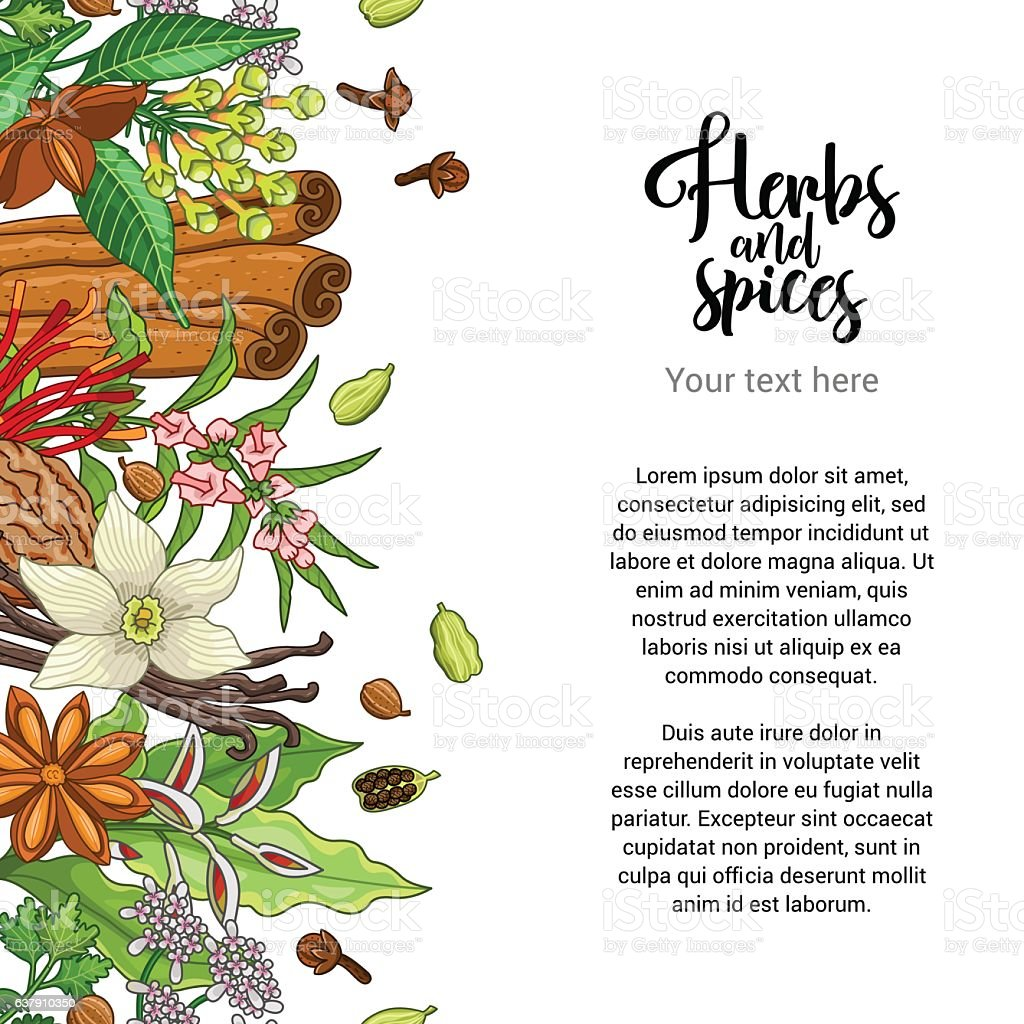 Vector bakery card design with spices and herbs vector art illustration