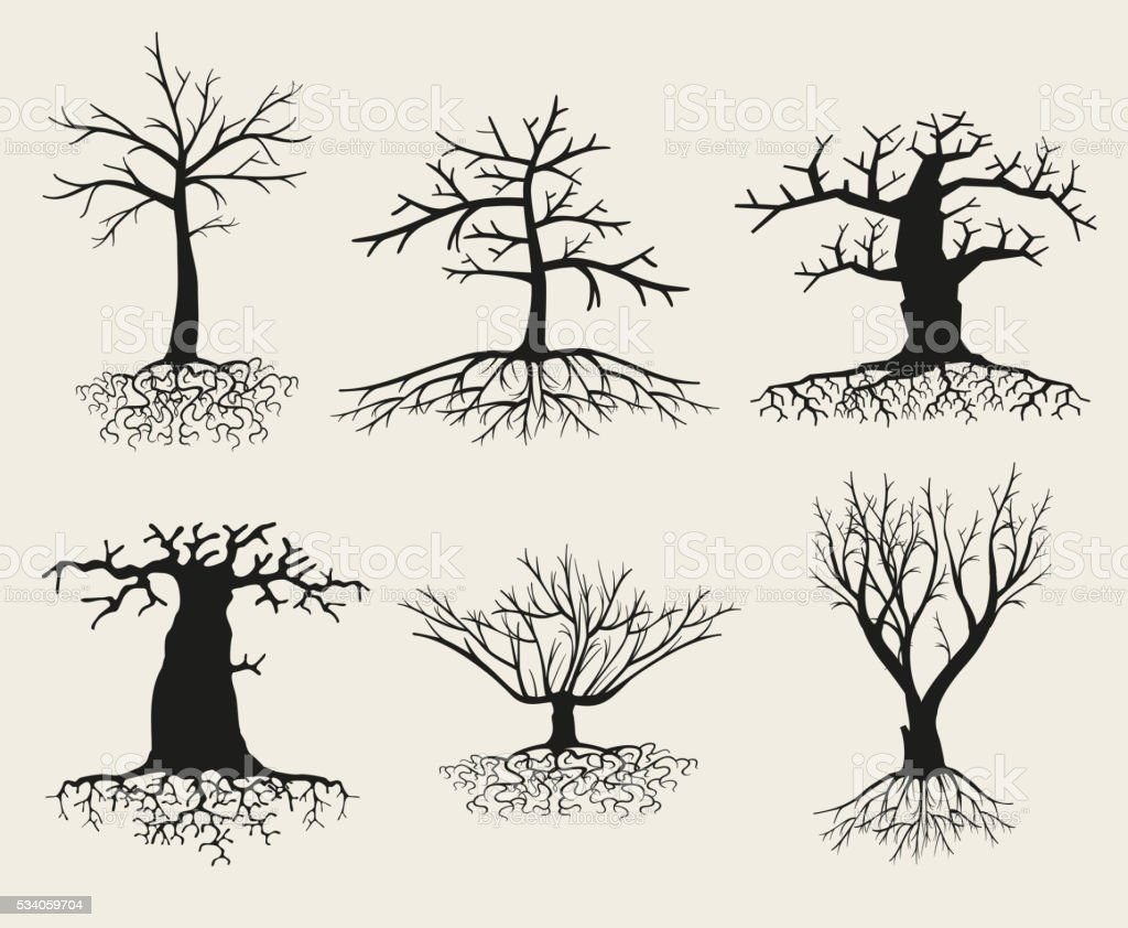 Vector bare tree silhouettes with roots vector art illustration