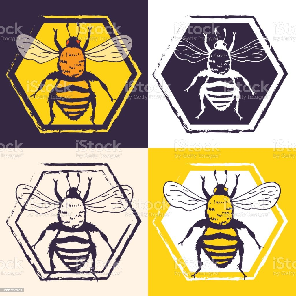 vector bees set illustration sketch with bumblebee honeycombs