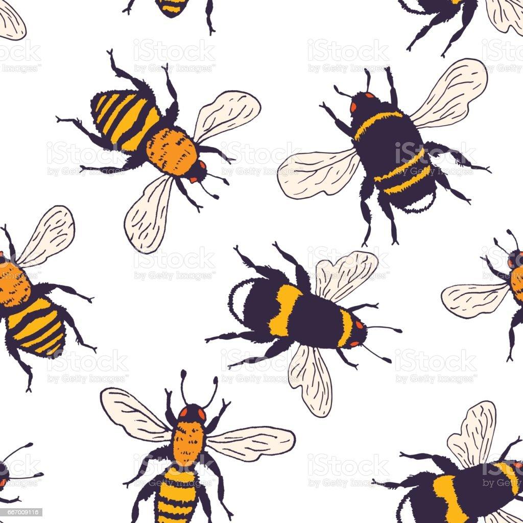 Vector bees set - seamless pattern vector art illustration