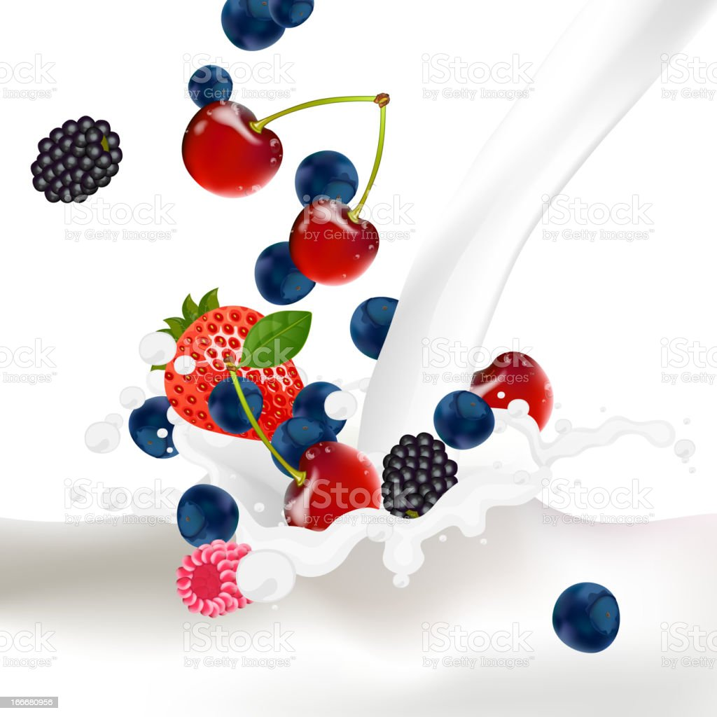 Vector Berries falling into a Splash of Milk royalty-free stock vector art