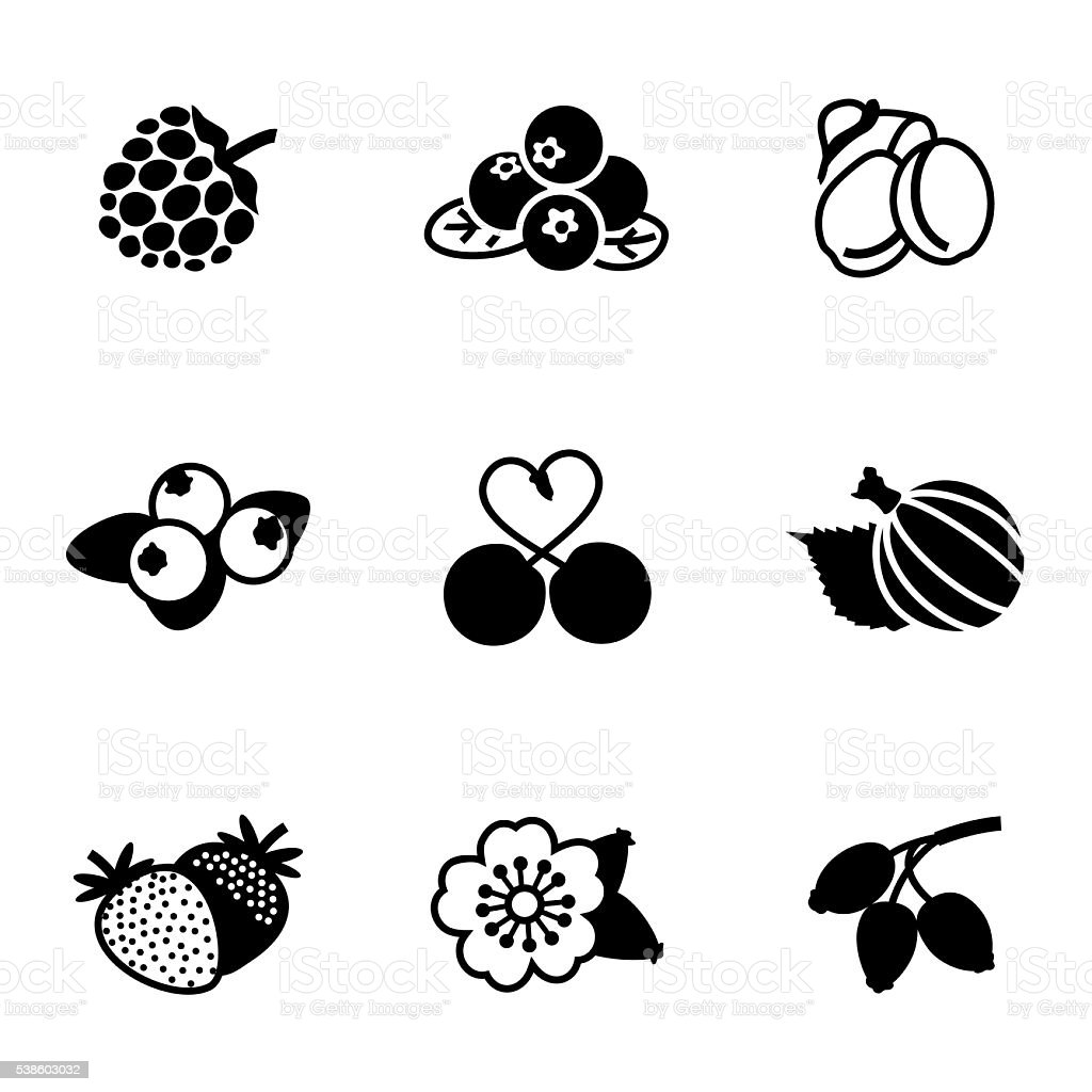 Vector Berries icon set vector art illustration