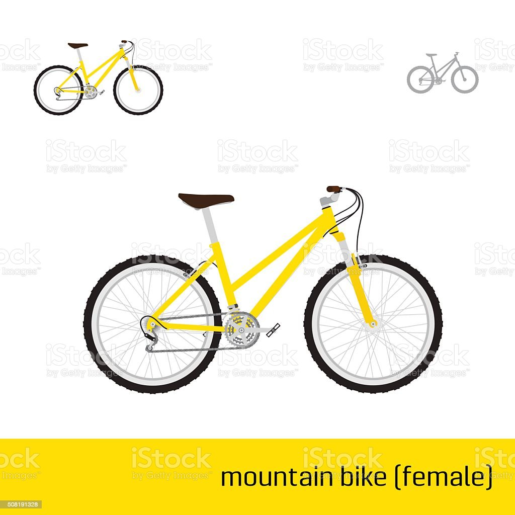 vector bicycles of various types vector art illustration